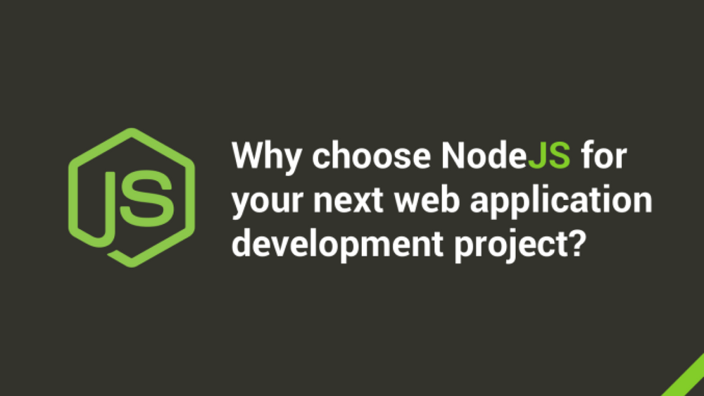 Why Choose Node.js for your next Web Application Development Project?